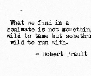 quotes, soulmate, and wild image