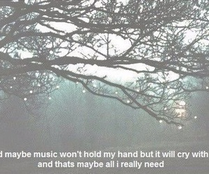 music, cry, and quotes image
