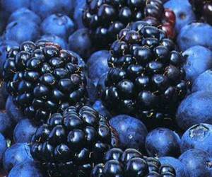fruit, blueberry, and blue image