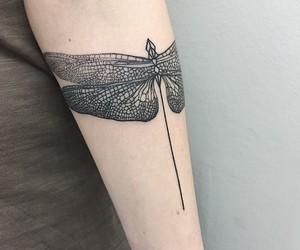 dragonfly, tattooart, and inked image