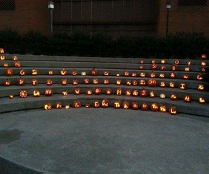 elements, Halloween, and pumpkin carving image