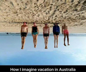 australia, funny, and funny pictures image
