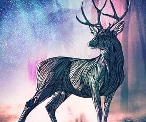 antlers, noble, and art image