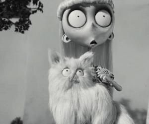 frankenweenie, tim burton, and cat image