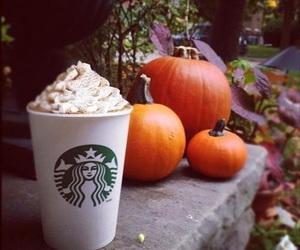 starbucks, pumpkin, and autumn image