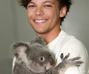 one direction, louis tomlinson, and Koala image