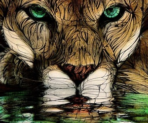drawing, eyes, and lion image