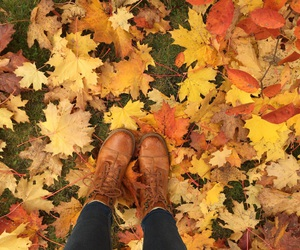 autumn, leaves, and shoes image