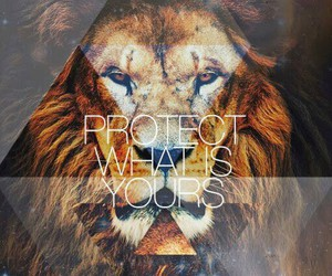 lion, protect, and quote image