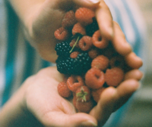 fruit, vintage, and berries image