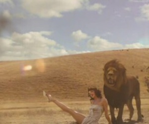lion, Taylor Swift, and wildest dreams image