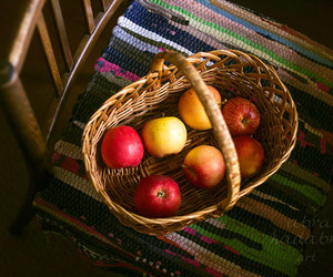 apples, autumn, and etsy image