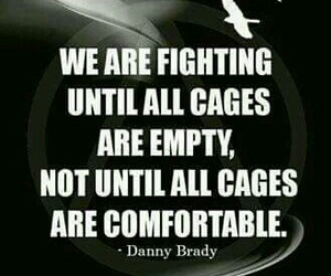 animals, quotes, and liberation image