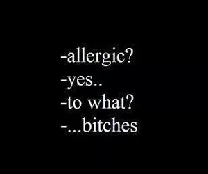 allergic, bitch, and quote image