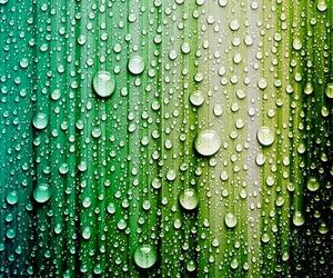 wallpaper, rain, and drop image