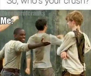 newt, thomas brodie sangster, and the maze runner image