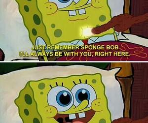 funny, spongebob, and humor image