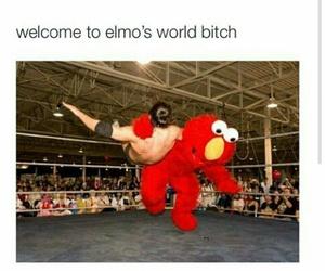 funny, elmo, and lol image