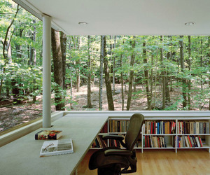 book, forest, and library image