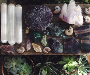 crystal, gems, and plants image