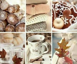 autumn, cozy, and crispy image