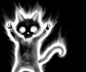 horror, black and white, and cat image