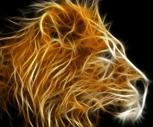 cool, intense, and lion image