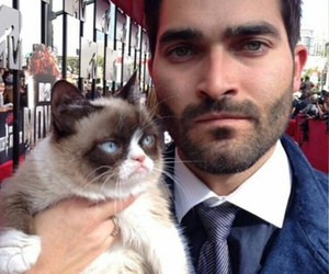 teen wolf and grumpy cat image