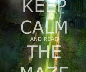 the maze runner, book, and keep calm image