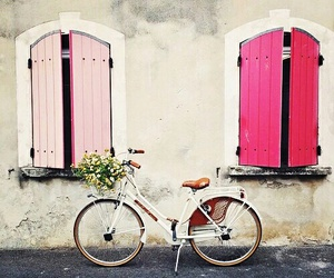 bike, pink, and flowers image