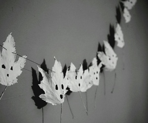 autumn, black and white, and creative image