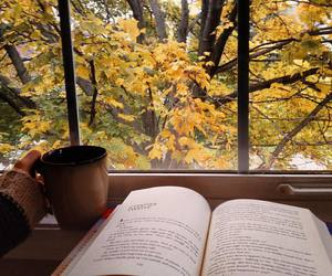 book, fall, and reading image