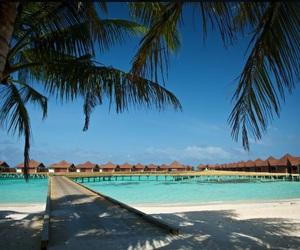 beach, goals, and Maldives image