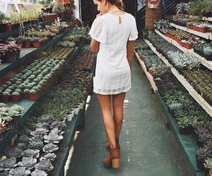 fashion and plants image