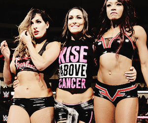 wwe, brie bella, and the bella twins image