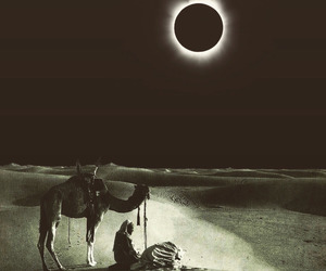 desert, eclipse, and man with camel. image