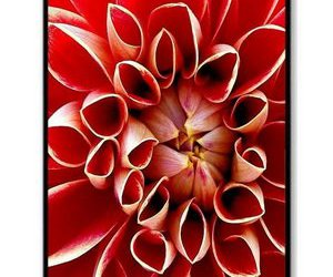 lovely, iphone 4 4s case, and pretty image