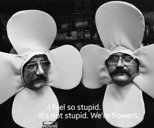 funny, flowers, and quotes image
