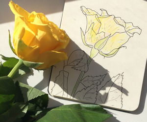 aesthetic, drawing, and flowers image