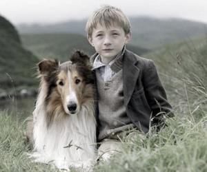 boy, collie, and dog image