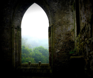 window, nature, and castle image