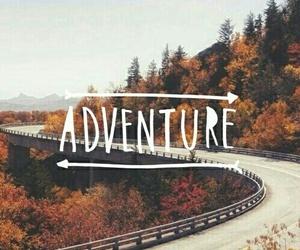 adventure, autumn, and fall image