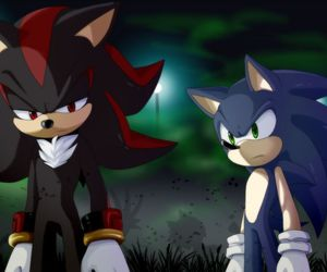Sonic the hedgehog and shadow the hedgehog image