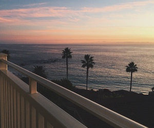 sea, palm trees, and palms image
