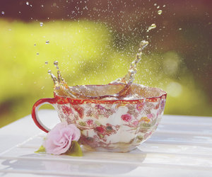 cup, floral, and photo image