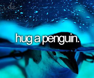 hug, penguin, and before i die image