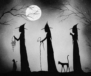 cat, moon, and Halloween image