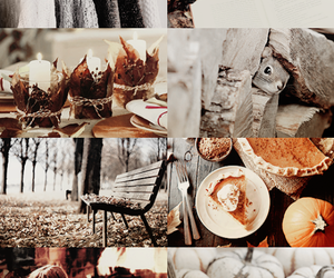 autumn and Collage image