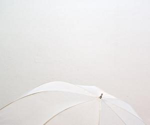 white, umbrella, and photography image
