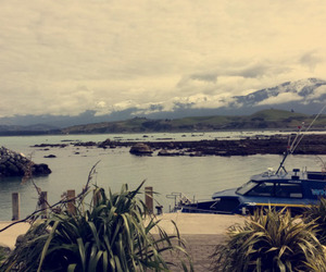 new zealand, vacation, and ⓤⓡⓛⓐⓤⓑ image